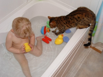 Magic and Noah in the bath. Photograph by and used courtesy of Amy B.